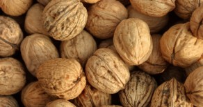 The Health Benefits of Nuts and Peanuts
